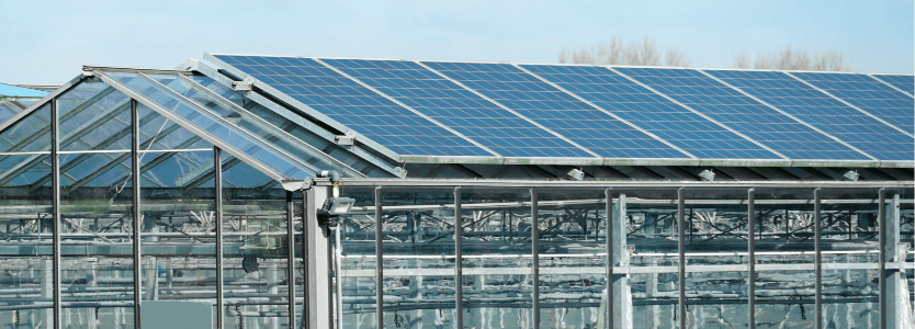 Large Screen 72 DPI-Vattenfall_SME_solar_greenhouse_01-2-1